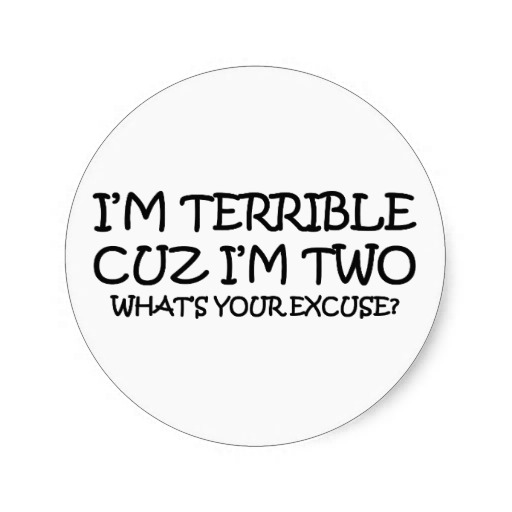 terrible_two_birthday_round_stickers-rbb3bb6e7b44a4061abbec5298cbe1623_v9waf_8byvr_512