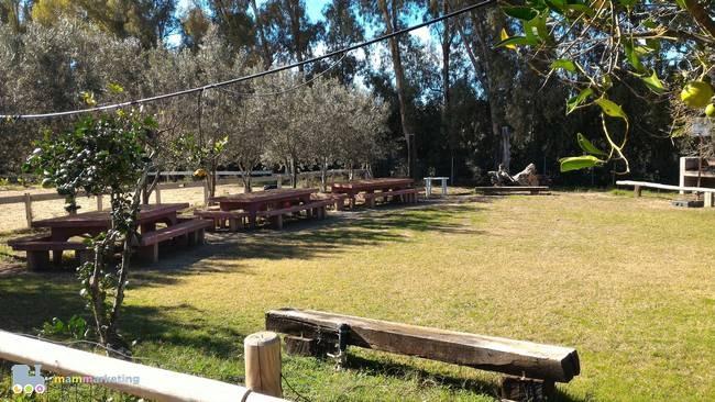 L'area pic-nic, prenotabile anche per feste ed eventi