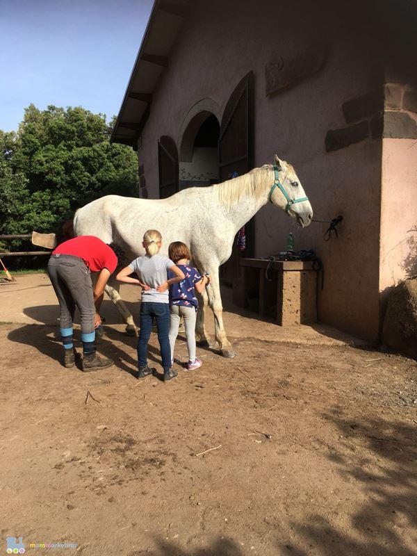 sardegna bambini equitazione