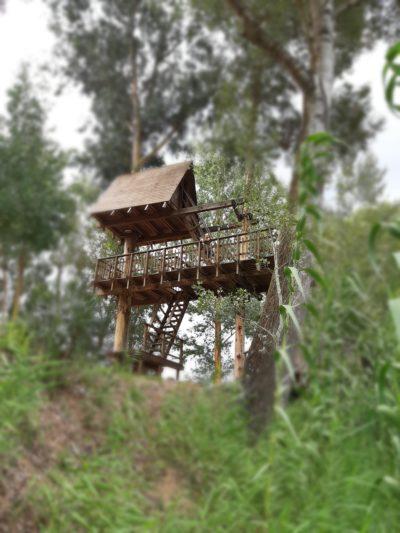 La casa sull'albero di Allai in Sardegna