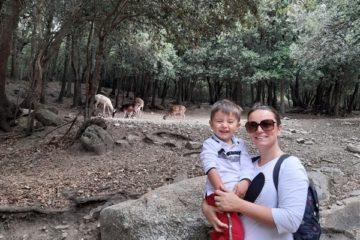 Parco di Donnortei Sardegna per bambini